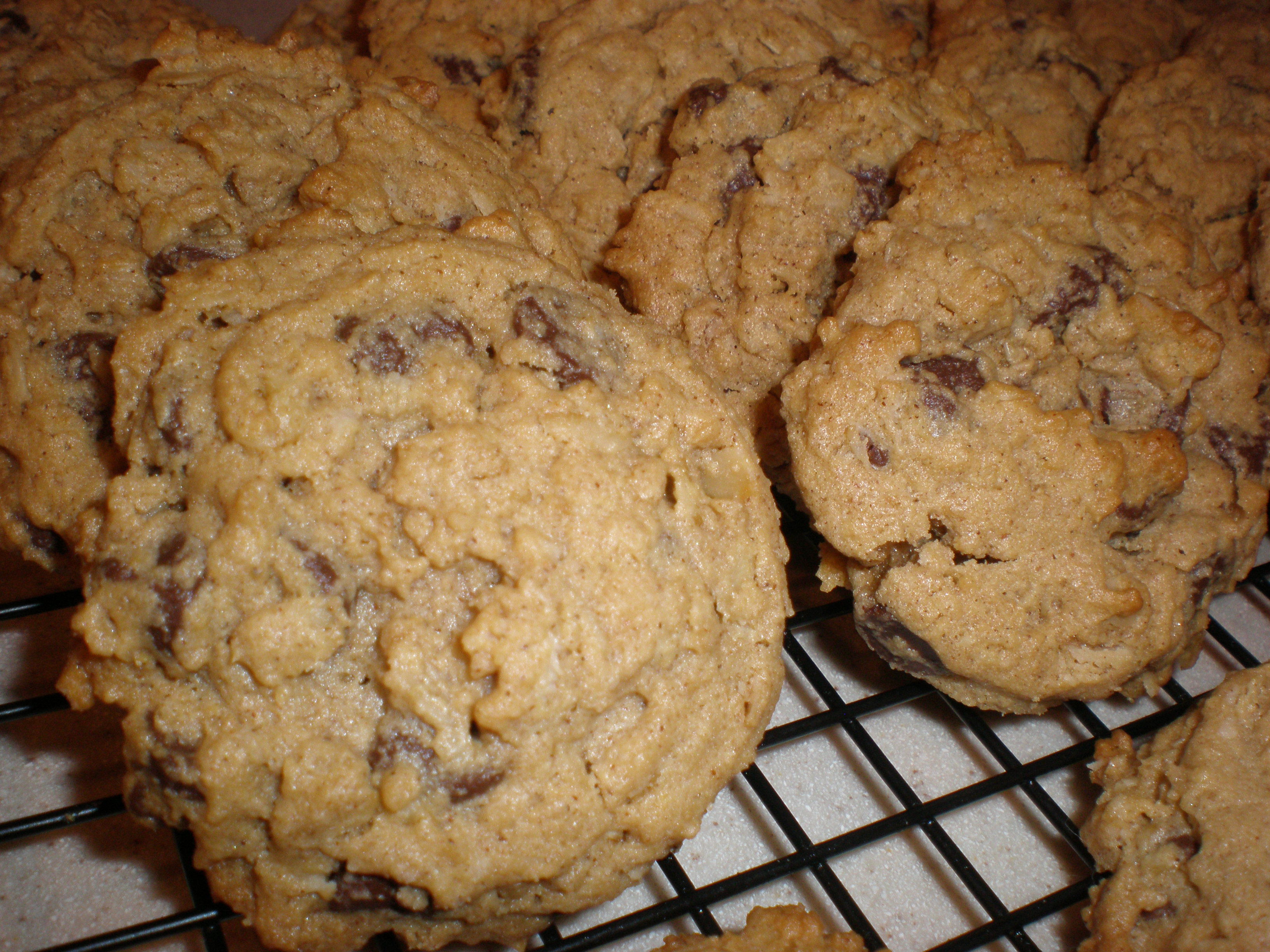 Peanut Butter and Chocolate Chip Oatmeal Chipsters – Fresh ...